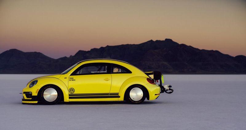 beetle-lsr-1-web