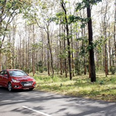 Hyundai Jungle Diaries V – Kanha and Bandavgadh