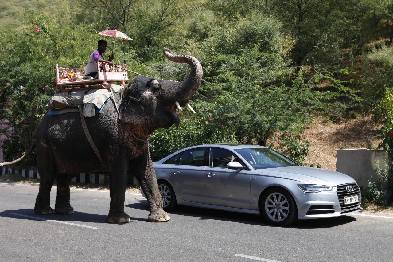 Driving the Audi A6 from Jaipur to Pune - Posing with an Indian Elephant-FB1