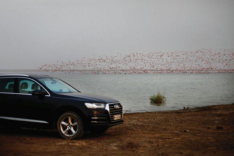 Audi Q7 to Rann of Kutch 4
